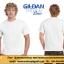 Gildan เสื้อยืด คอกลมสีขาว แขนสั้น Premium Cotton 76000 thumbnail 1