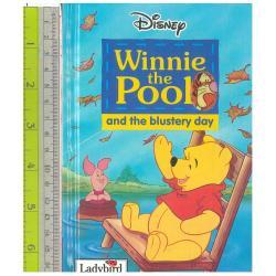 Winnie Pool Blustery day