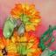 งานปักริบบิ้นรูปดอกทานตะวันบานสะพรั่ง by Easy DIY ครอสติสคริสตัล thumbnail 2