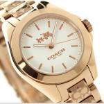 นาฬิกาผู้หญิง Coach รุ่น 14502185, Tristen Ladies Watch