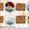 เปิดรับPreorder มีค่ามัดจำ500 บาท Pokemon Terrarium Collection EX Alola (Set of 6) ( 1เซ็ตได้ครบ 6 แบบ)